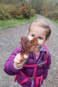 Brown leaf J