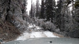 This wasn't here when I drove in... luckily I could still get down via Eagle Creek Rd.