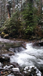 Elliot Creek